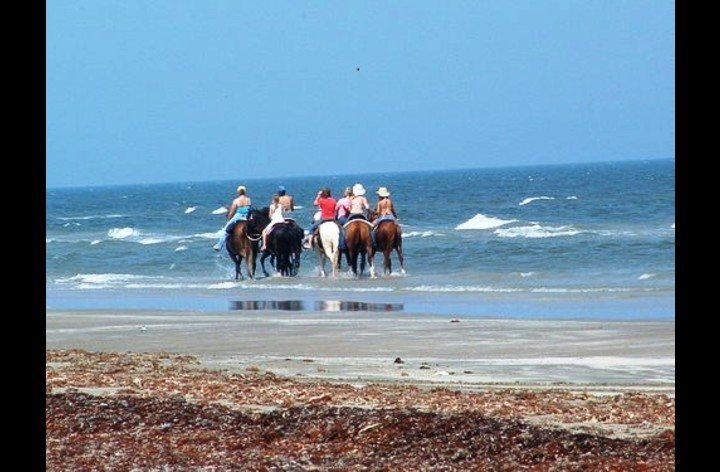 Horseback riding on the beach is a must!